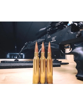 SSD Custom Ammunition